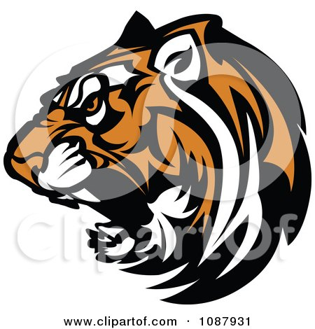 450x470 Growling Tiger Clipart amp Growling Tiger Clip Art Images