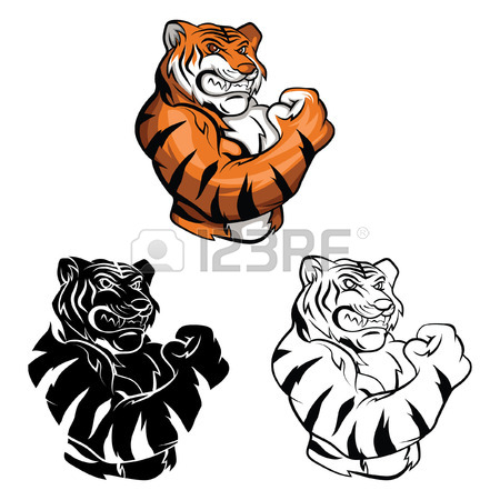 450x450 446 Tiger Head Outline Cliparts, Stock Vector And Royalty Free