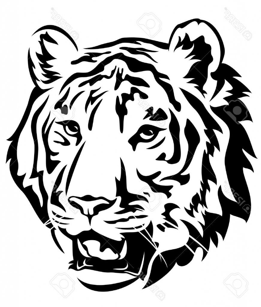 871x1024 Tiger Drawing Outline 9 Pics Of Tiger Outline Coloring Page Cute