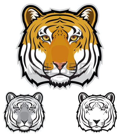 395x450 73 Sumatran Tiger Stock Vector Illustration And Royalty Free