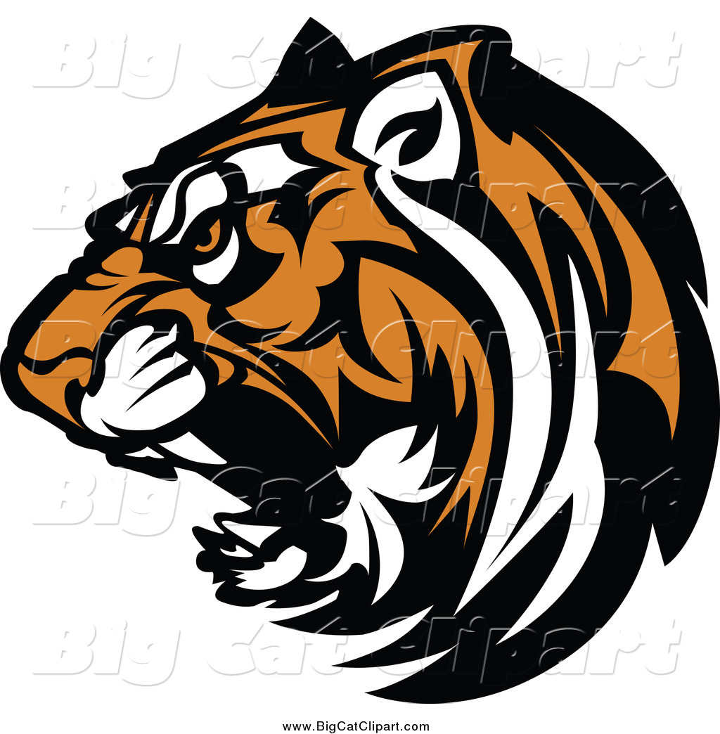 1024x1044 Tiger cat clipart, explore pictures