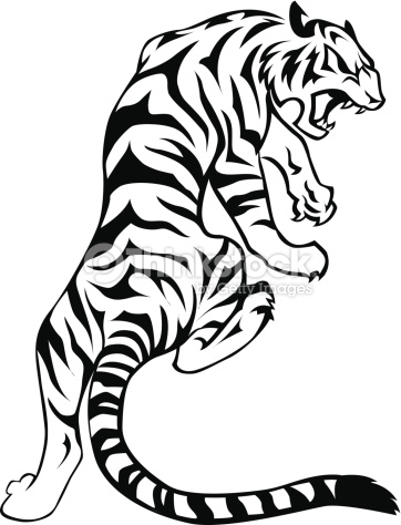 362x474 Tiger face png clipart