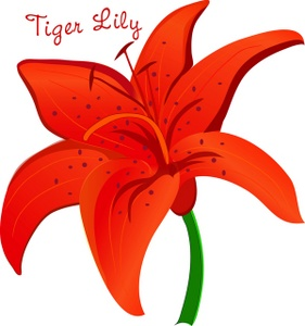 281x300 Tiger Lily Clipart Image