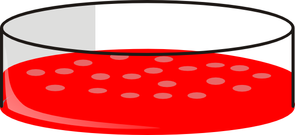 600x275 Cho Cell Petri Dish Clip Art