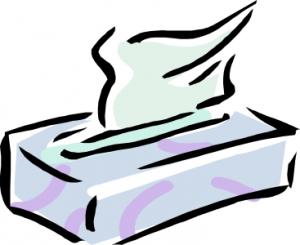 300x245 Tissu Clip Art Download