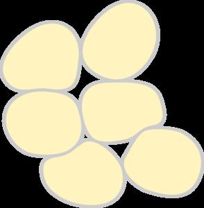294x300 Adipose Tissue Clip Art