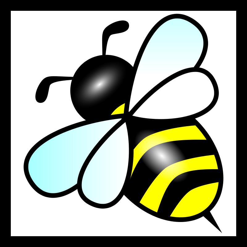 800x800 Bee Free Vector 4vector