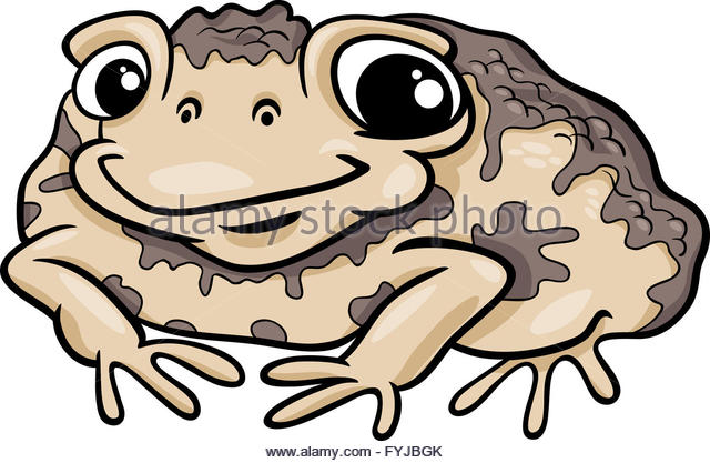 640x417 Toad Illustration Stock Photos Amp Toad Illustration Stock Images