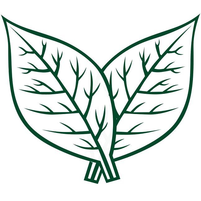 Tobacco Leaf Clip Art