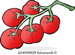 263x194 Vine Tomatoes Clip Art And Illustration. 61 Vine Tomatoes Clipart