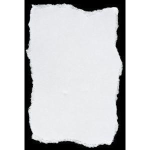 300x300 Torn Paper Texture