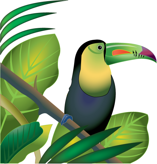523x546 Free Clip Art Animals Birds Toucan In Rainforest Color