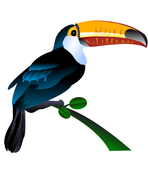566x648 Free To Use Amp Public Domain Toucan Clip Art