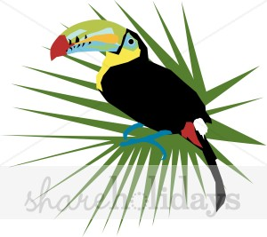 300x267 Toucan Bird Clipart Party Clipart Amp Backgrounds