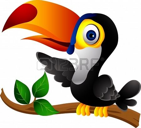 Toucan Cartoons