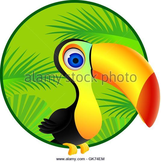 534x540 Cartoon Toucan Stock Photos Amp Cartoon Toucan Stock Images