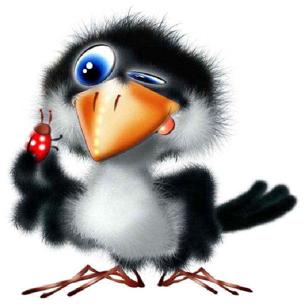 600x600 Toucan Clipart Animated