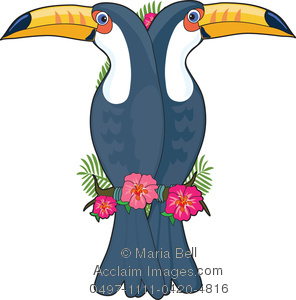 296x300 Letter T Is For Toucan, A Letter Of The Alphabet