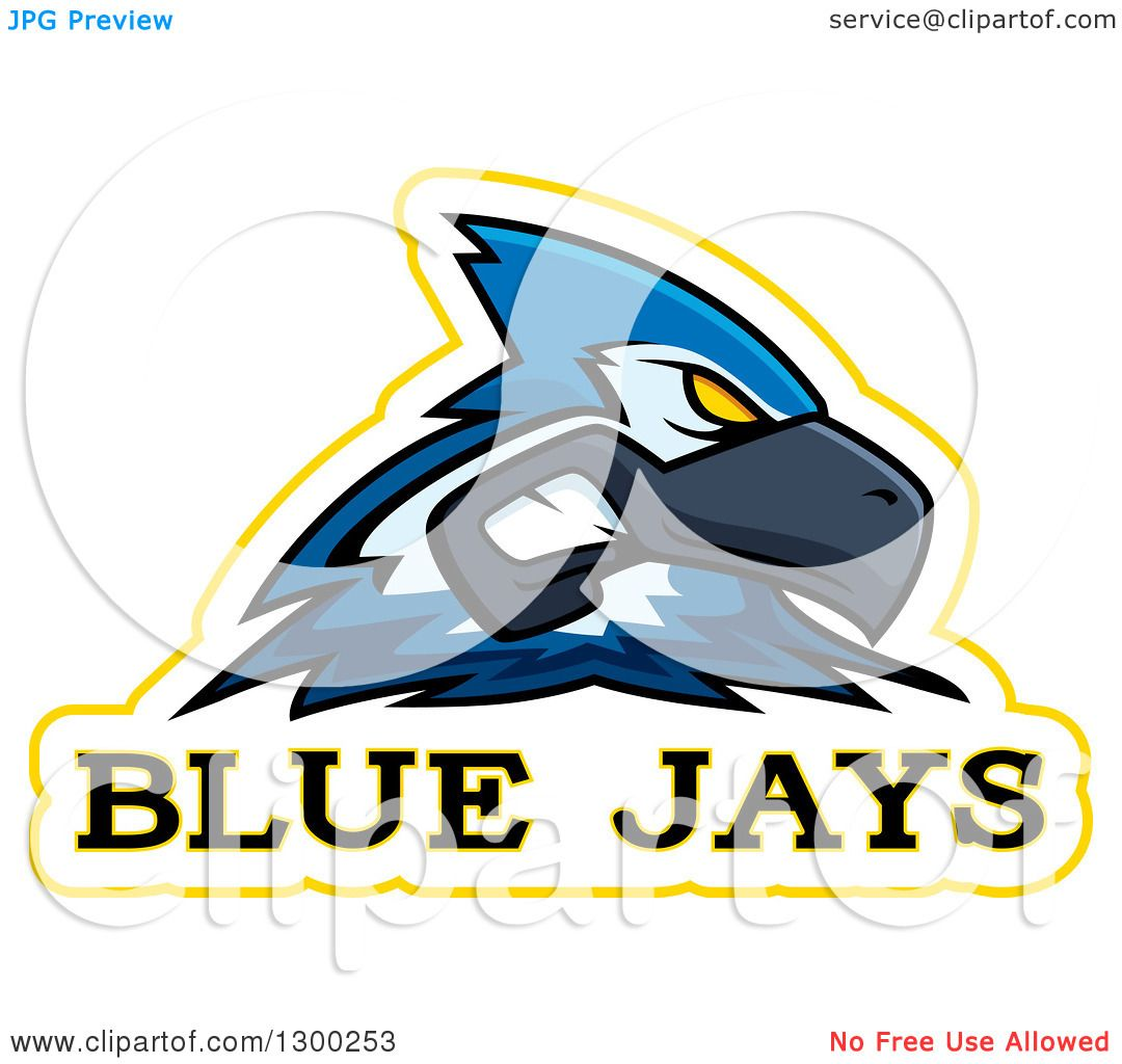 1080x1024 Clipart Of A Tough Blue Jay Bird Mascot Head With Text