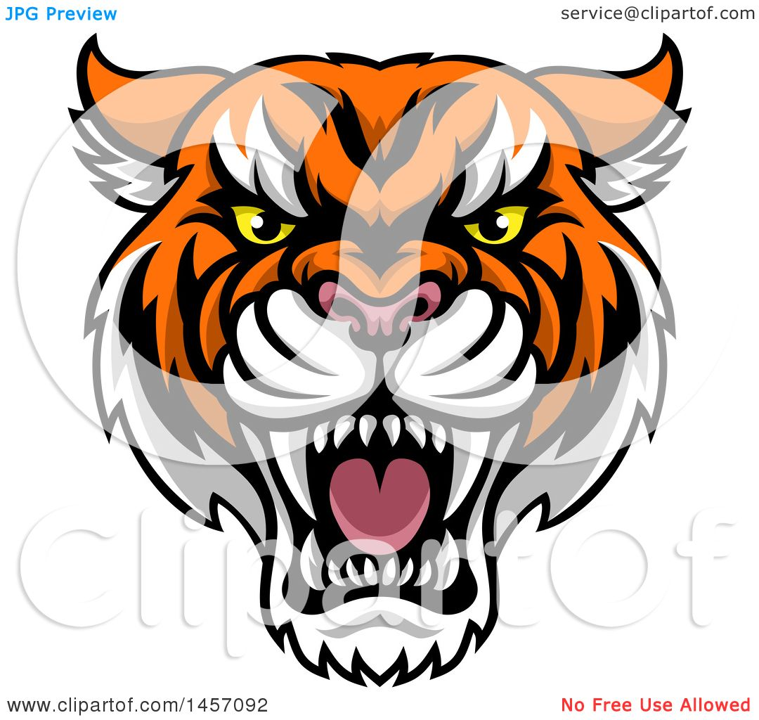 1080x1024 Tiger Clipart Tough