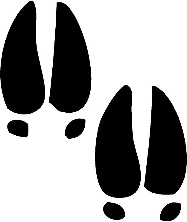 625x743 Art Deer Prints Clipart