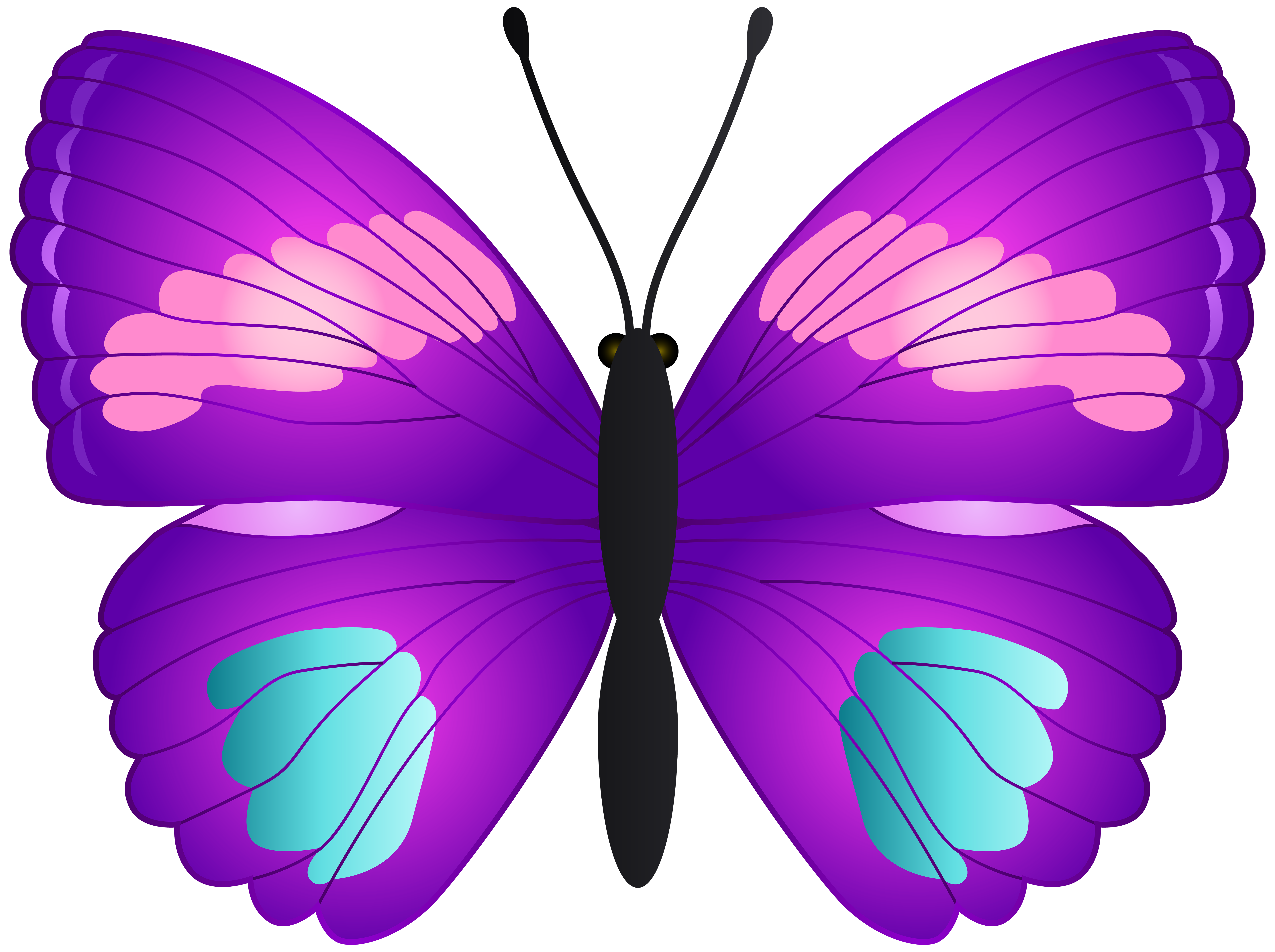 7000x5228 Butterfly Transparent Png Clip Artu200b Gallery Yopriceville