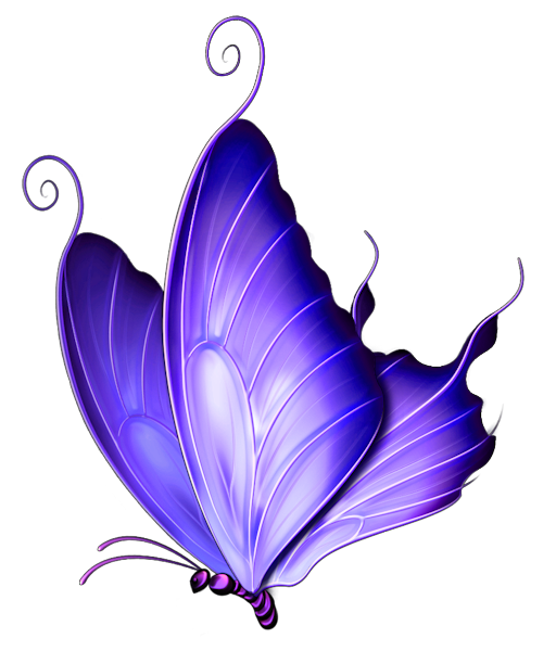 512x600 Butterfly Clipart Transparent Background