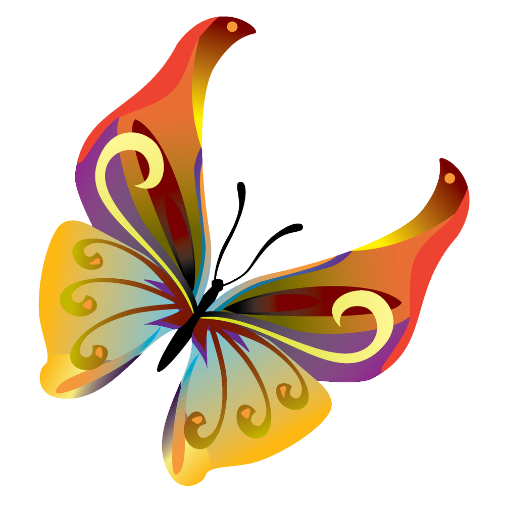1000x1000 Butterfly Clipart Transparent Png