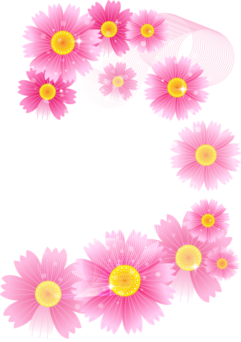 492x699 Pink Flowers Full Transparent Clipart 0 Image