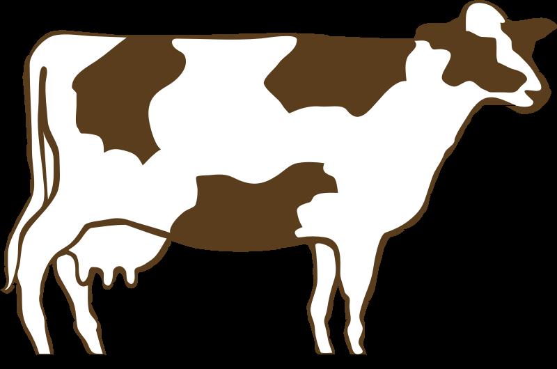 800x530 Download Cow Clip Art ~ Free Clipart Of Cows Cute Calfs, Bulls Amp More