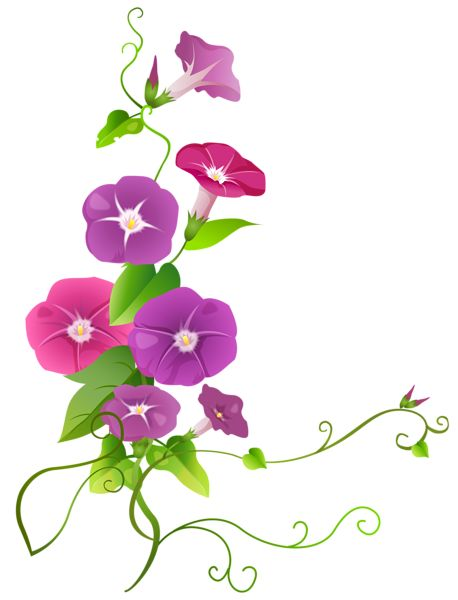 Transparent Flower Clipart