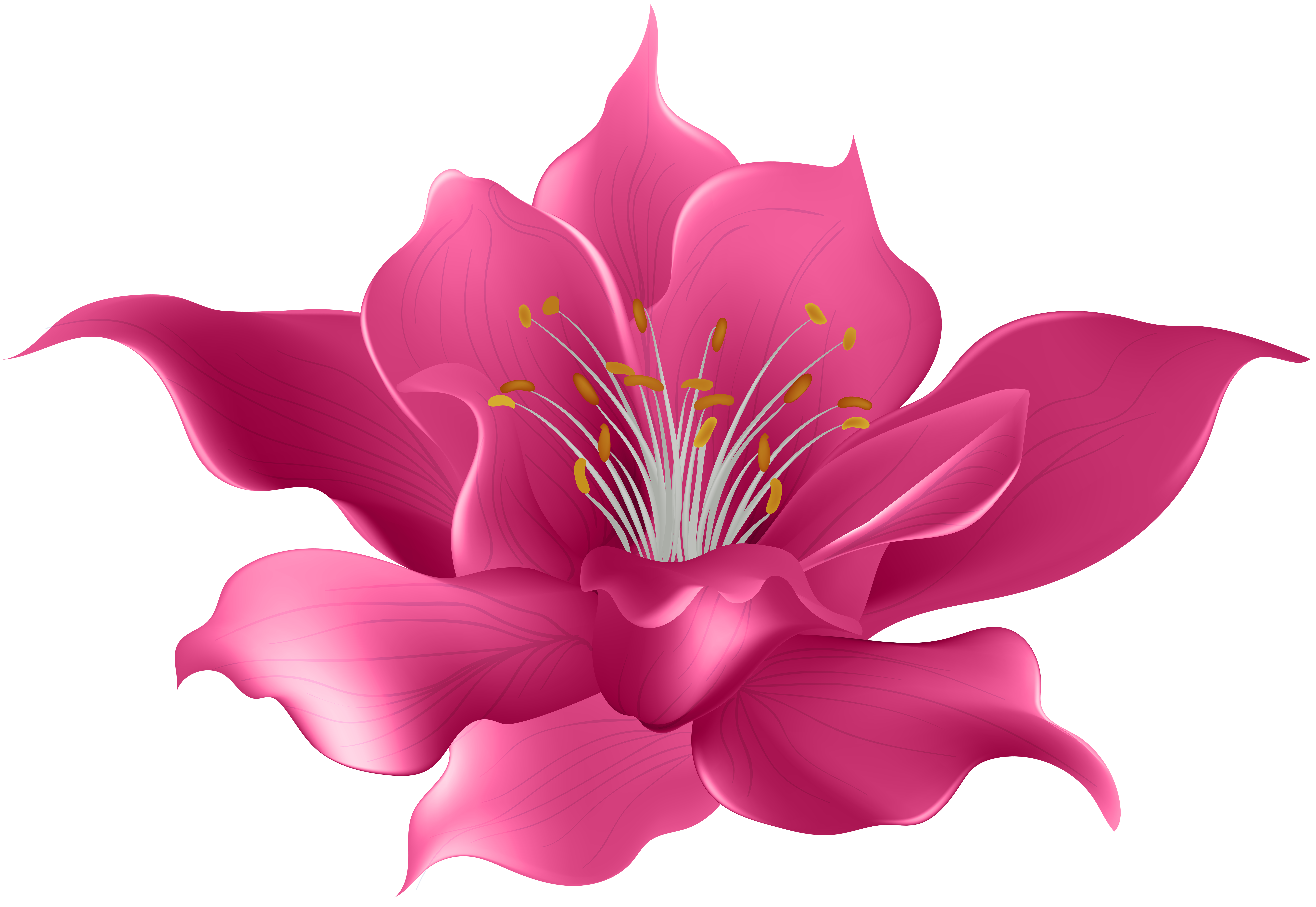 Transparent Flower Clipart | Free download on ClipArtMag