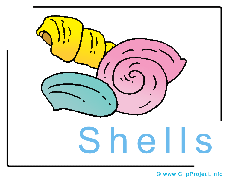 765x604 Shells Clipart Image Free