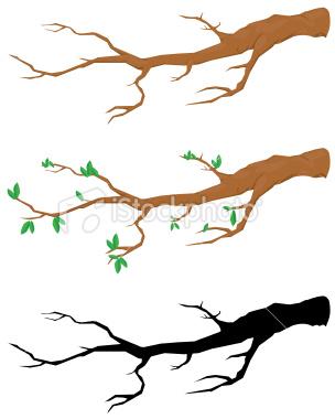 304x380 Clip Art Tree Branches Clipart Panda