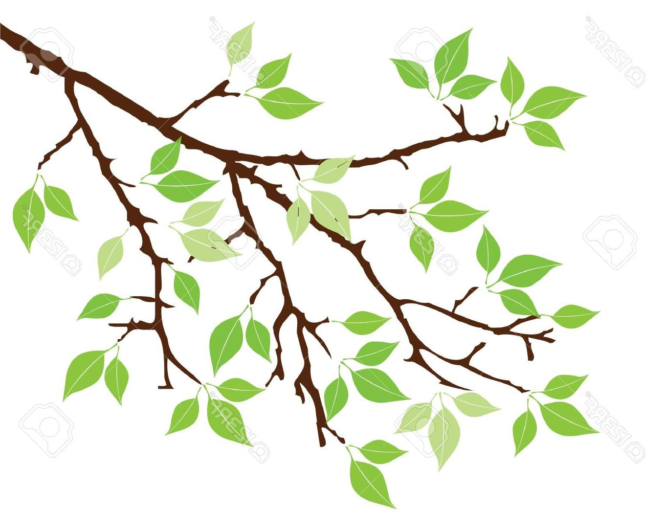 1300x1036 Best Free Vector Tree Branch With Leaves Stock Silhouette Design