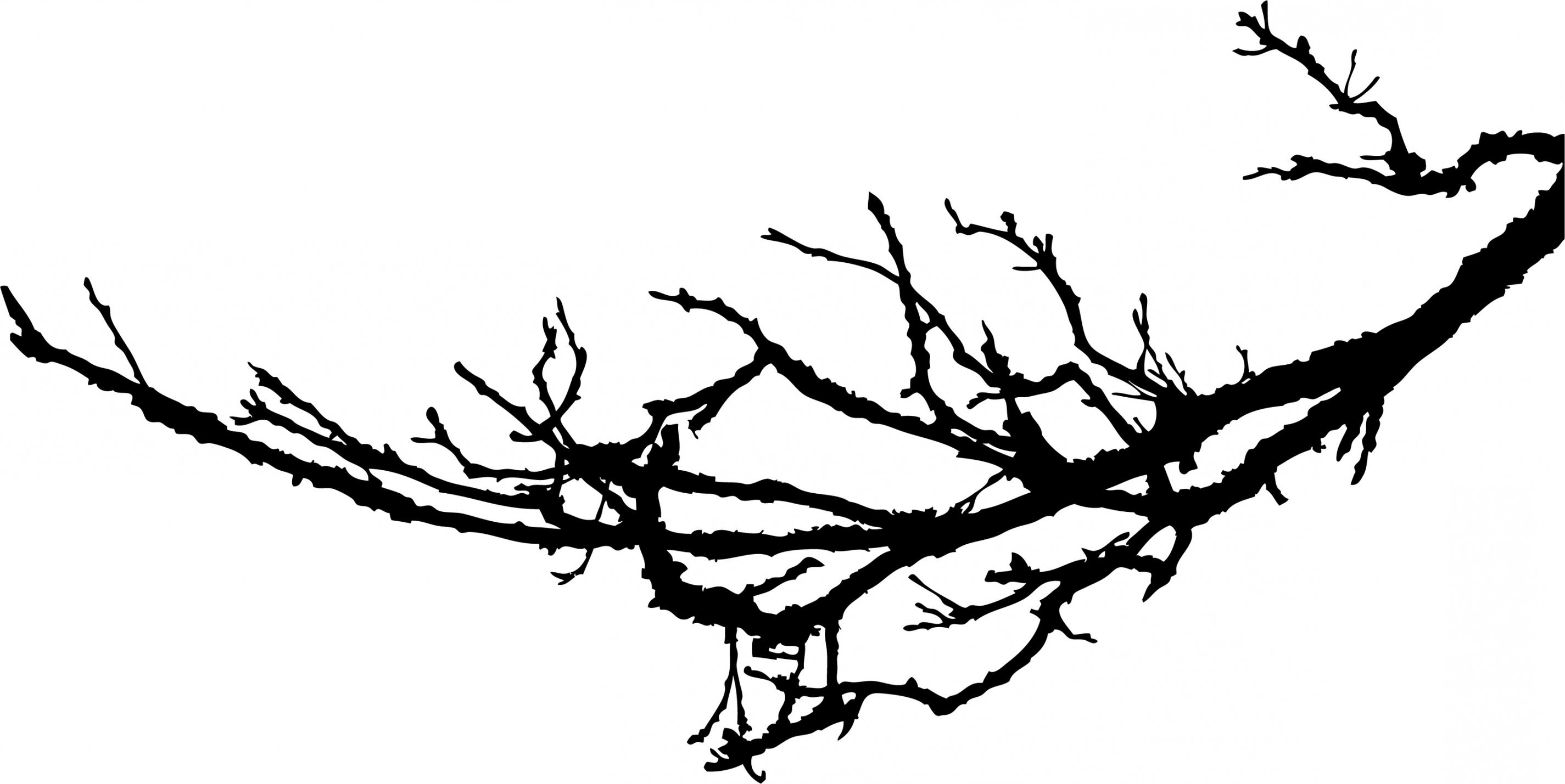 2850x1429 Best HD Tree Branch Silhouette Clip Art Photos » Free Vector Art