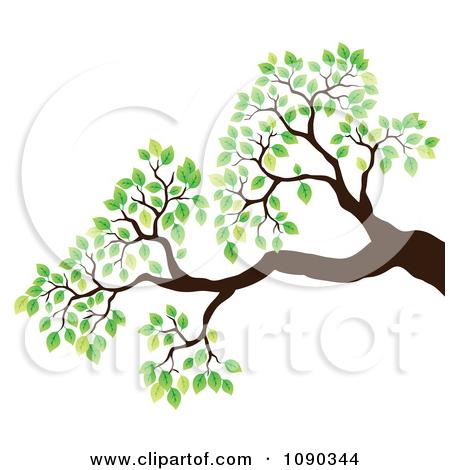 450x470 Leaves Clipart Tree Limb