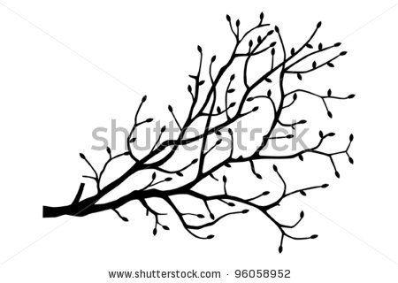 450x320 211 Best Trees