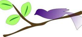 272x125 Best Photos Of Tree Branch Clip Art