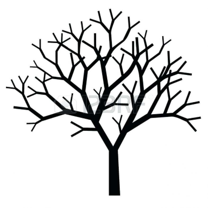 878x878 72 Terrific Tree With Branches Outline Clip Art Tree Branches