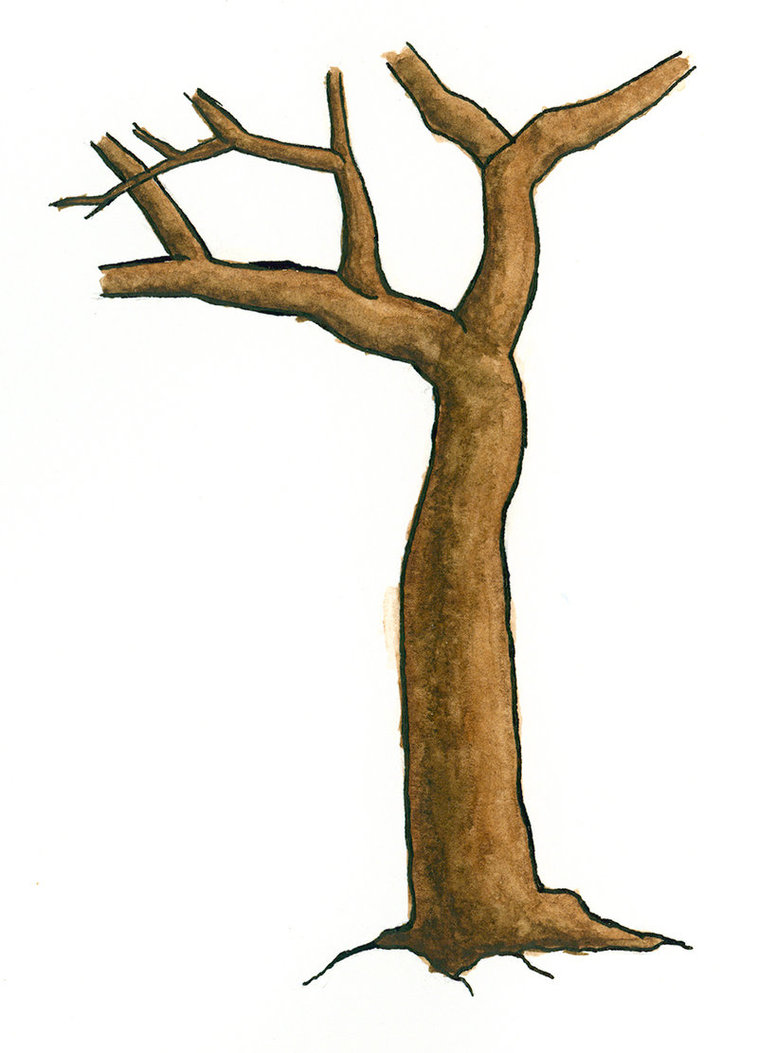 758x1053 Branch Clipart Tree Bark