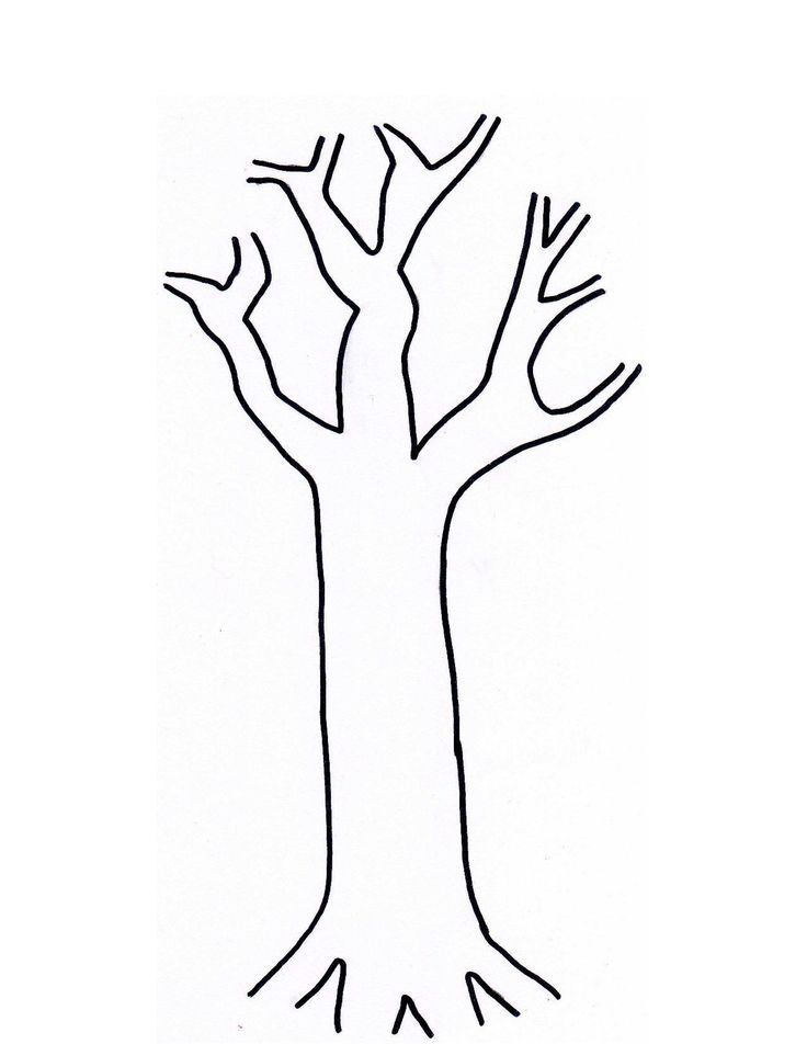 736x952 Tree Trunk Clip Art 4