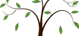 272x125 bare, tree