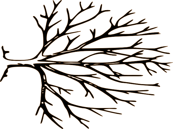600x448 Black And White Bare Tree Clipart Clipart Panda