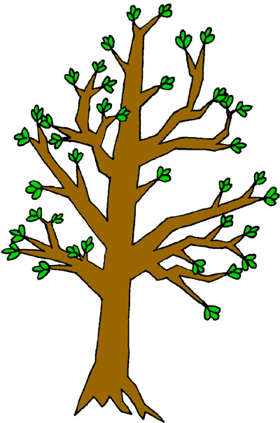 400x605 Branch Clipart Tree Trunk Branches