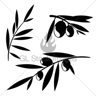 325x325 Graphic Olive Tree Branches Gl Stock Images