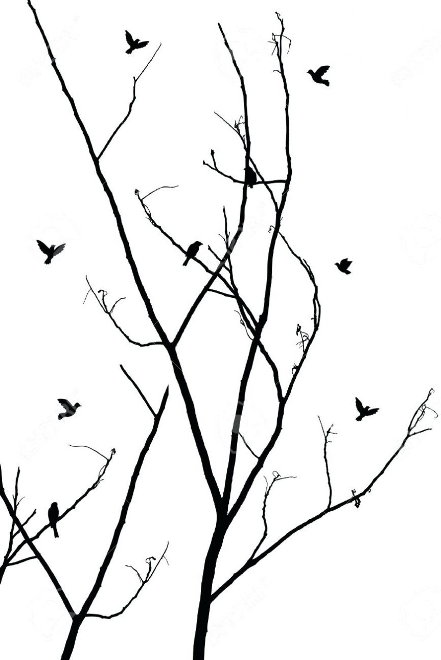 863x1291 Outline Tree Branches Of Roots Three Outline Of Tree