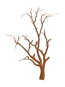 224x300 Spooky Dead Tree Branches Vector Royalty Free Stock Image