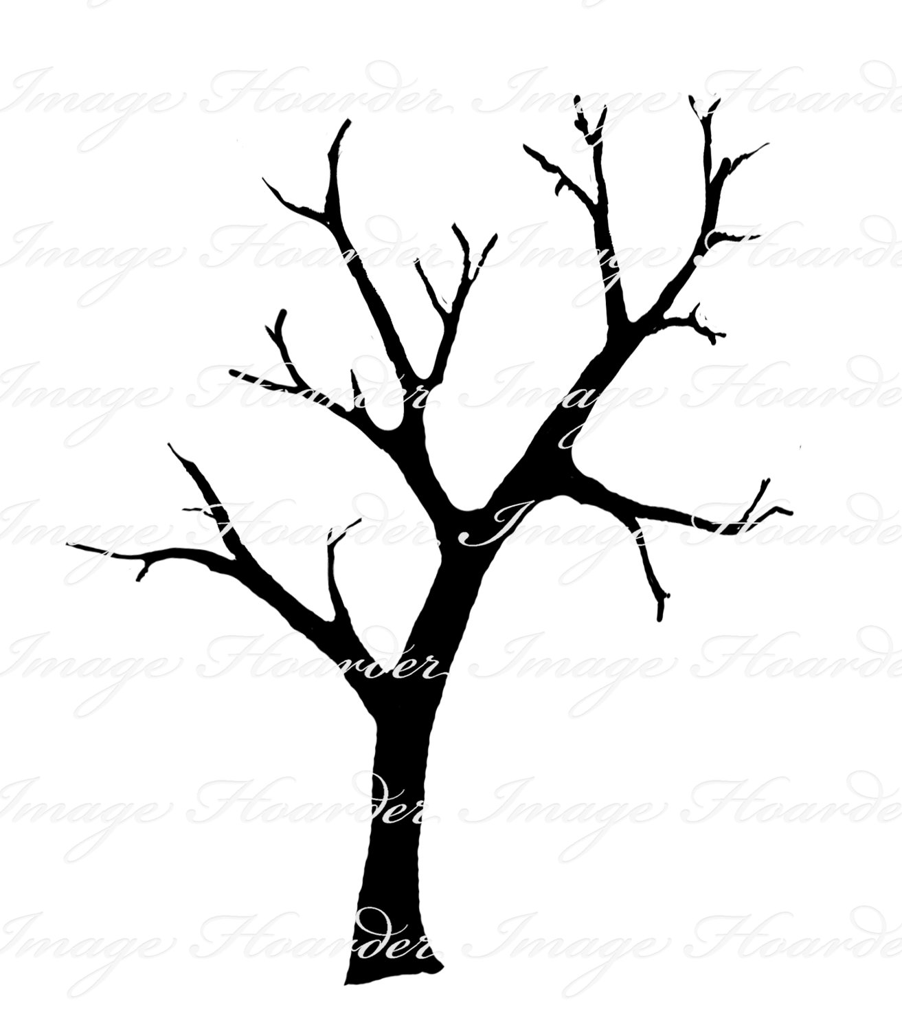 1313x1500 Tree And Branches Clipart