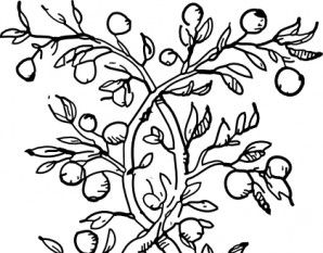 298x233 Tree Branches And Roots Clip Art Free Vectors Ui Download